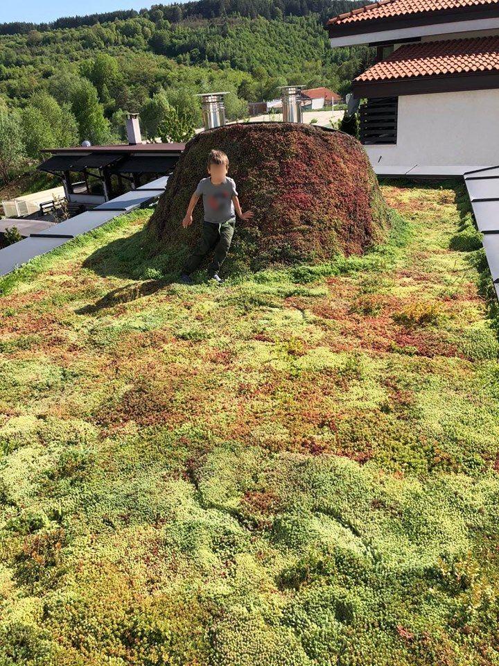 Делта Хил зелен покрив
