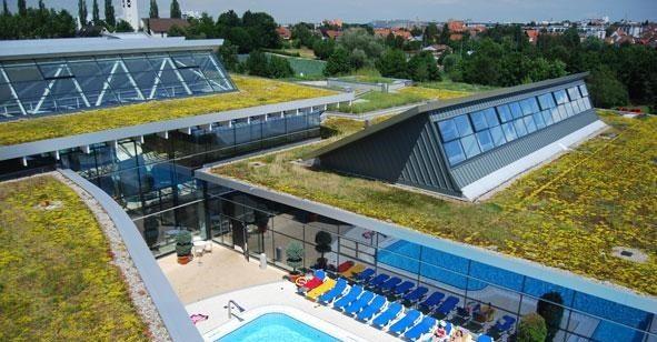 Икономичен плосък зелен покрив