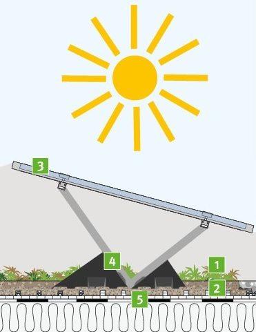 Соларен зелен покрив