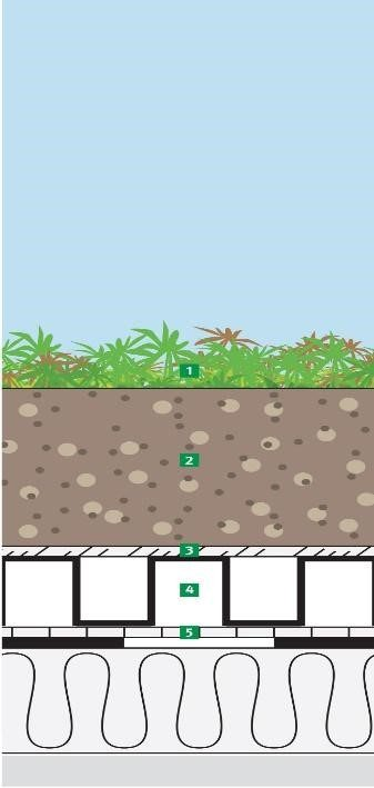 Икономичен плосък зелен покрив   Economical flat green roof