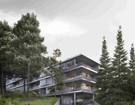 Бояна зелена фасада 2